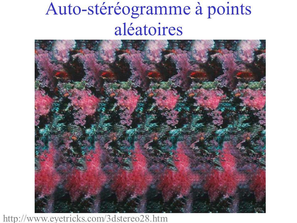 Auto-stéréogramme à points aléatoires http://www.eyetricks.com/3dstereo28.htm