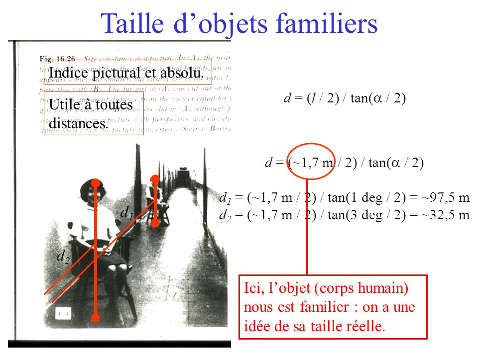 Taille d'objets familiers d1d1 d2d2 d = (~1,7 m / 2) / tan(  / 2) d 1 = (~1,7 m / 2) / tan(1 deg  / 2) = ~97,5 m d 2 = (~1,7 m / 2) / tan(3 deg  /