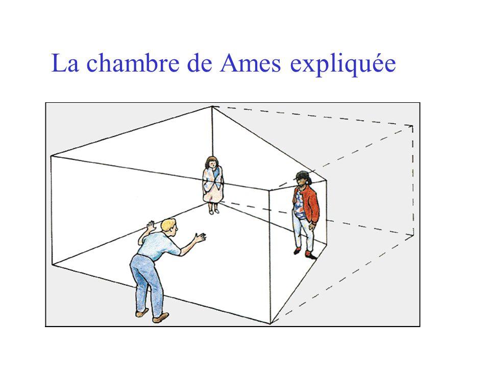 La chambre de Ames expliquée