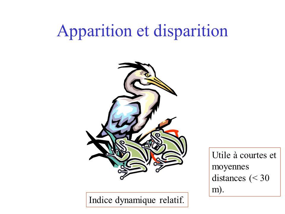 Apparition et disparition Indice dynamique relatif. Utile à courtes et moyennes distances (< 30 m).