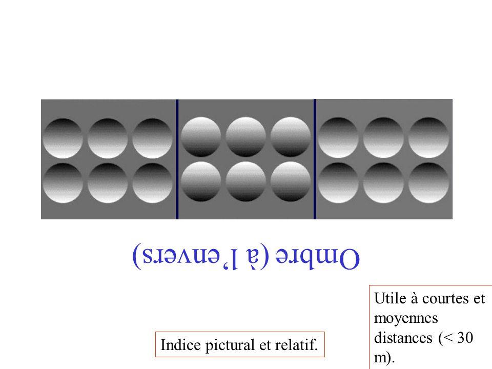 Ombre (à l'envers) Indice pictural et relatif. Utile à courtes et moyennes distances (< 30 m).