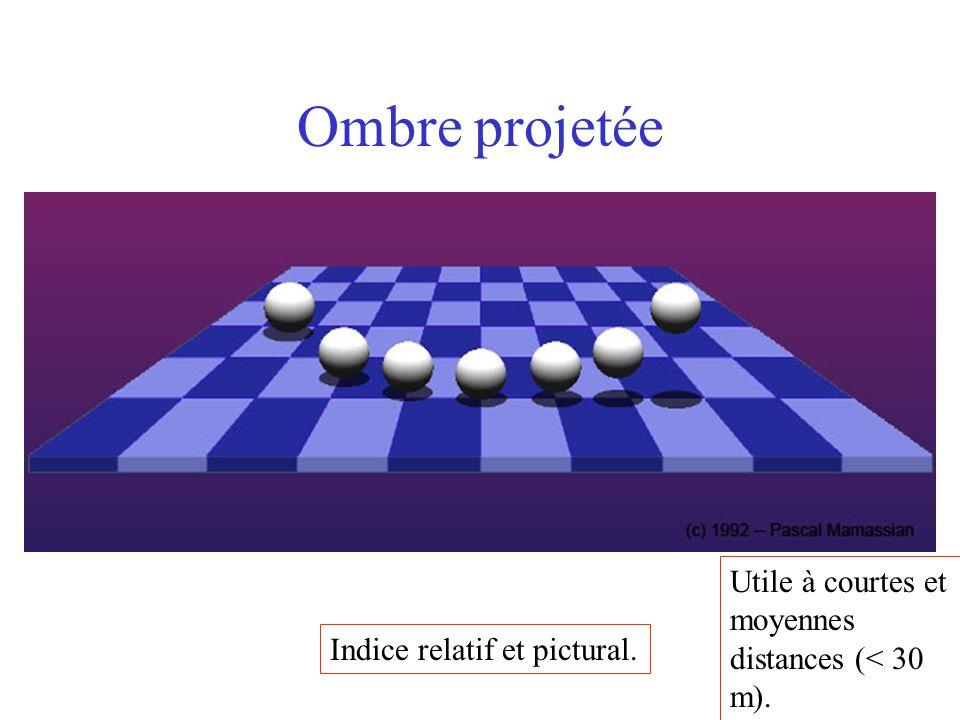 Ombre projetée Indice relatif et pictural. Utile à courtes et moyennes distances (< 30 m).