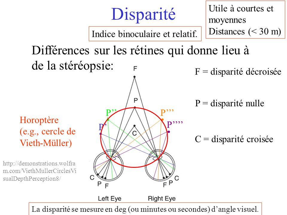 Disparité C = disparité croisée P = disparité nulle F = disparité décroisée P' P'' P''' P'''' Horoptère (e.g., cercle de Vieth-Müller) Différences sur
