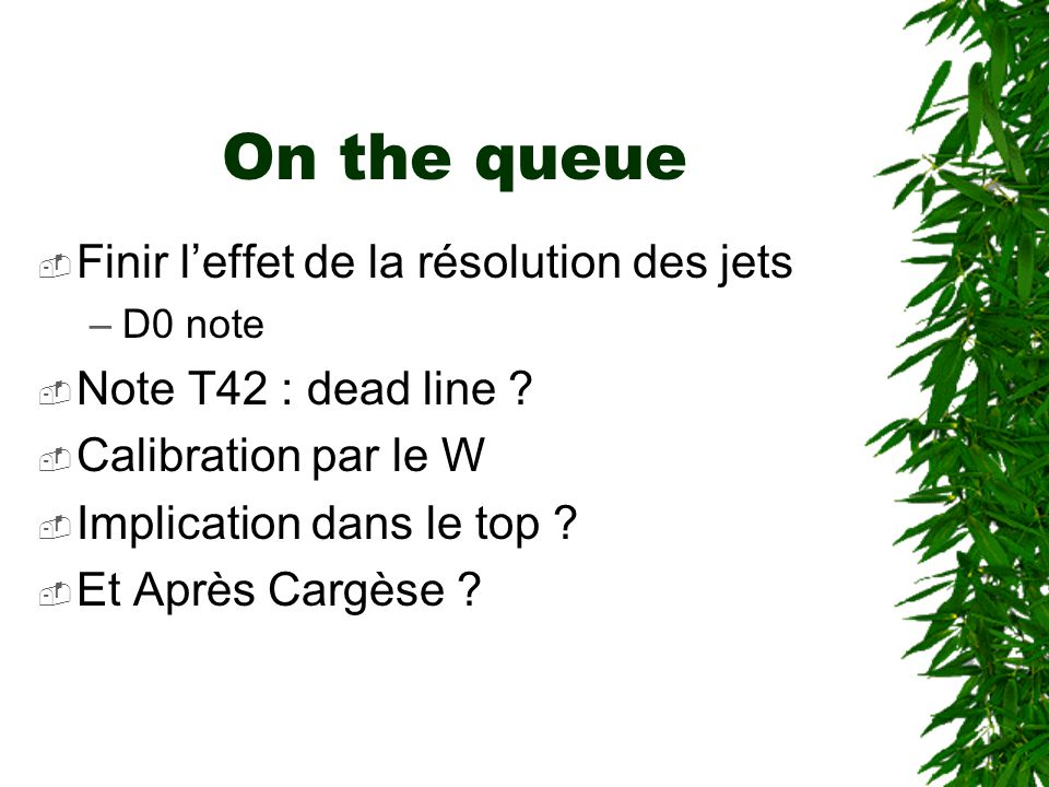 On the queue  Finir l'effet de la résolution des jets –D0 note  Note T42 : dead line .