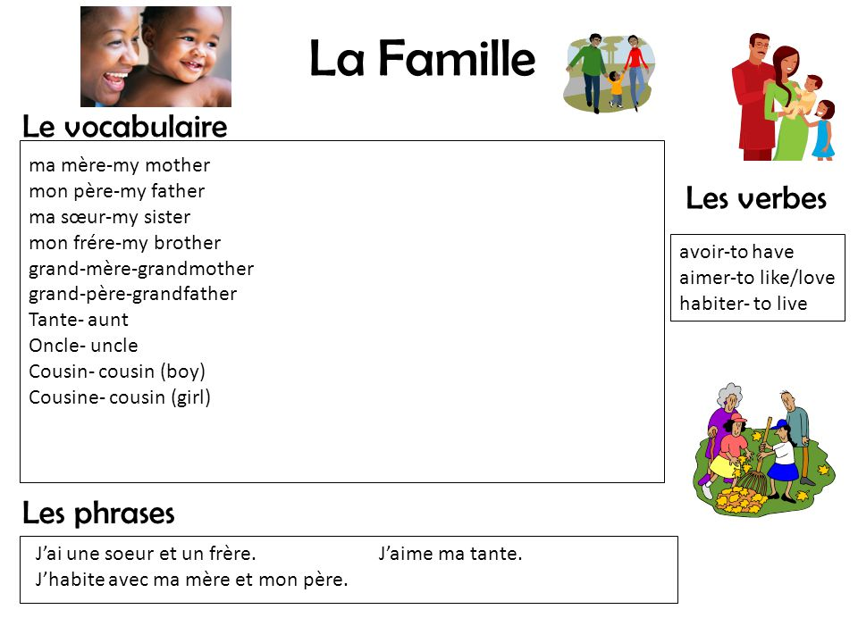 La Famille Le vocabulaire Les phrases Les verbes avoir-to have aimer-to like/love habiter- to live ma mère-my mother mon père-my father ma sœur-my sis