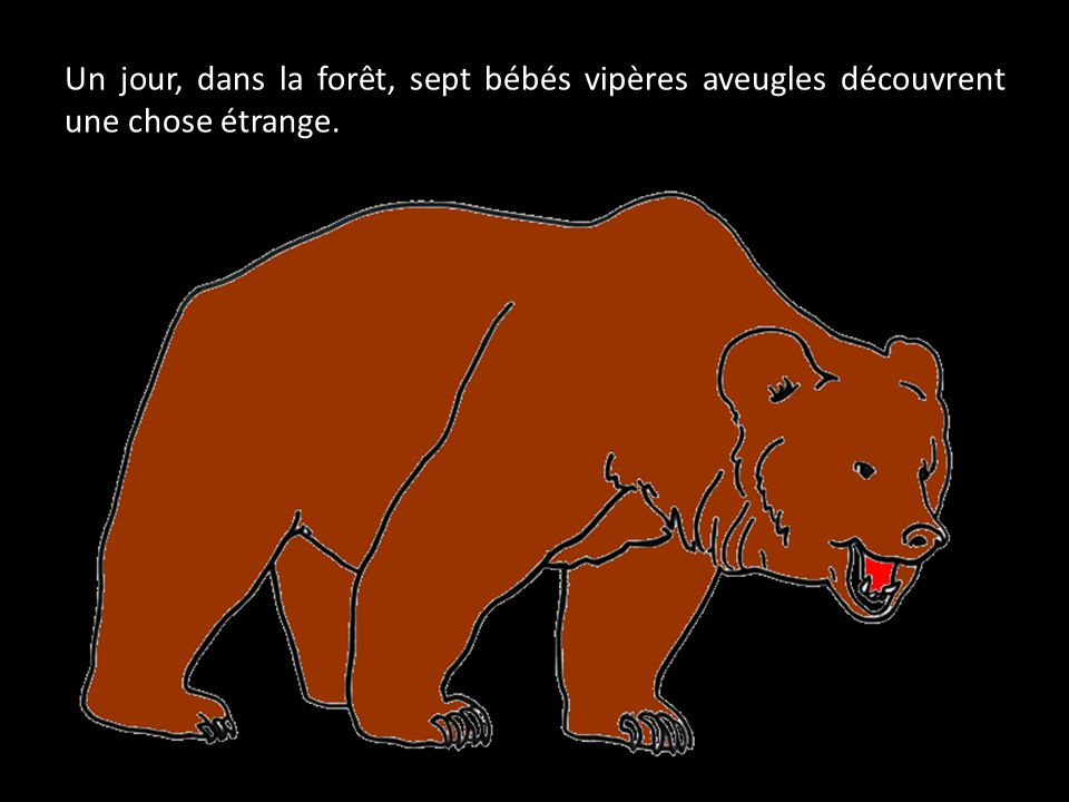 Un jour, dans la forêt, sept bébés vipères aveugles découvrent une chose étrange.