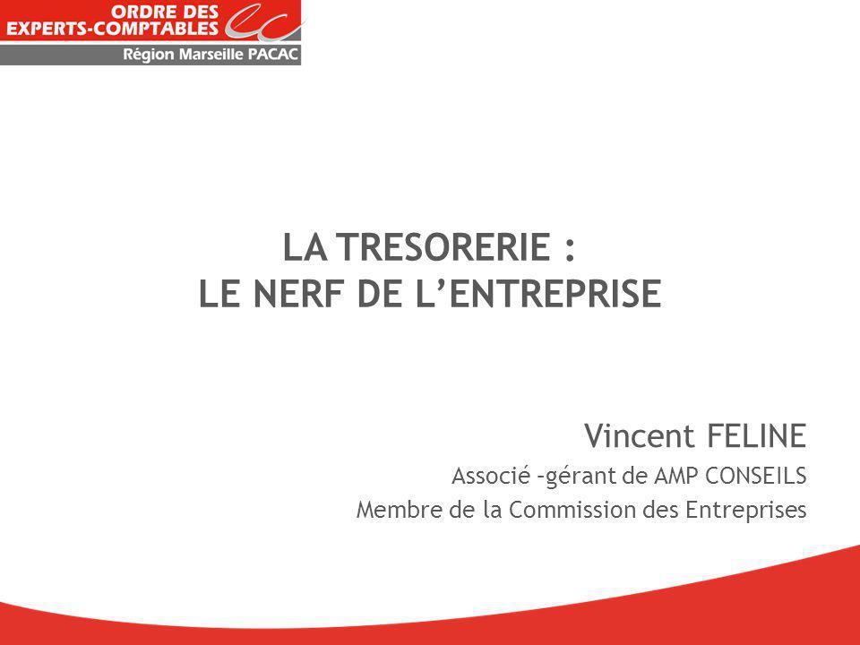 LA TRESORERIE : LE NERF DE L'ENTREPRISE Vincent FELINE Associé –gérant de AMP CONSEILS Membre de la Commission des Entreprises