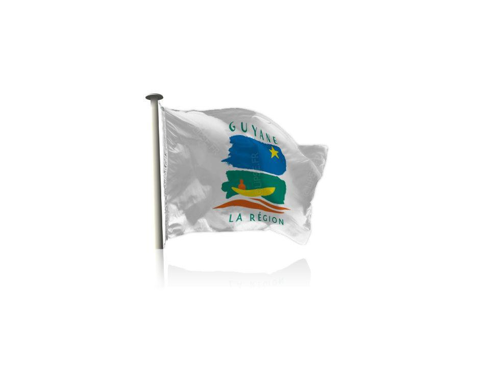 La Guyane L'activité économique en Guyane s'est développée sur la bande côtière où l'on trouve les villes les plus importantes (Cayenne, Kourou, Saint-Laurent-du- Maroni, Remire-Montjoly, Matoury).
