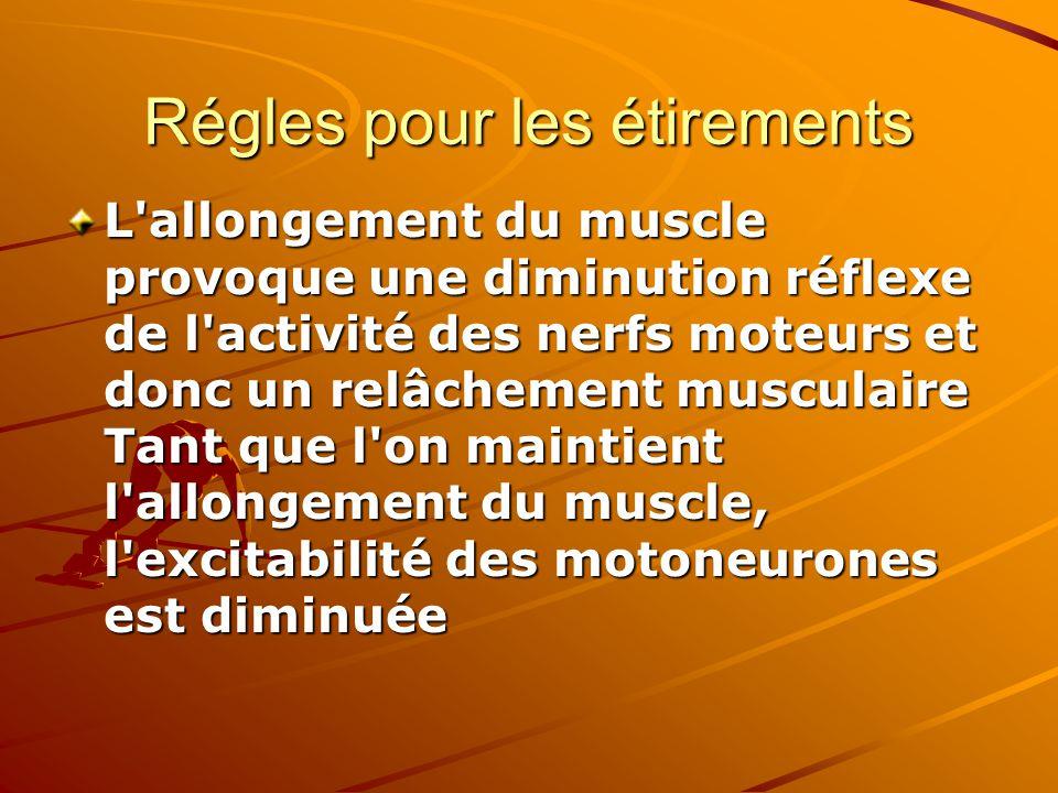 Régles pour les étirements L'allongement du muscle provoque une diminution réflexe de l'activité des nerfs moteurs et donc un relâchement musculaire T