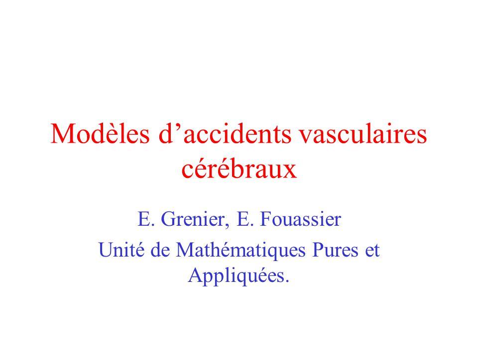 Modèles d'accidents vasculaires cérébraux E. Grenier, E. Fouassier Unité de Mathématiques Pures et Appliquées.