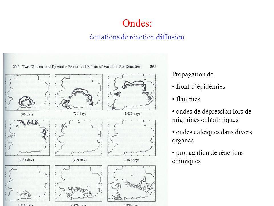 Ondes: équations de réaction diffusion Propagation de front d'épidémies flammes ondes de dépression lors de migraines ophtalmiques ondes calciques dan