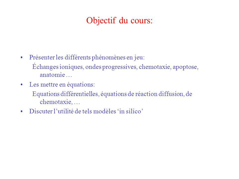 Objectif du cours: Présenter les différents phénomènes en jeu: Échanges ioniques, ondes progressives, chemotaxie, apoptose, anatomie … Les mettre en é