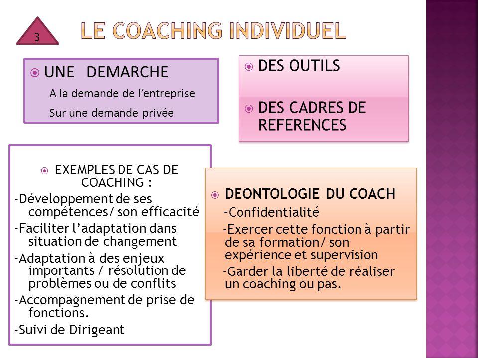  UNE DEMARCHE A la demande de l'entreprise Sur une demande privée  EXEMPLES DE CAS DE COACHING : -Développement de ses compétences/ son efficacité -