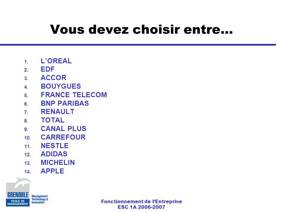 Fonctionnement de l'Entreprise ESC 1A 2006-2007 Vous devez choisir entre… 1.