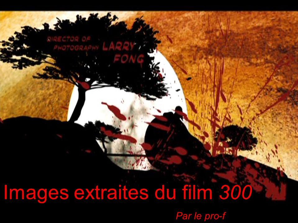 Images extraites du film 300 Par le pro-f