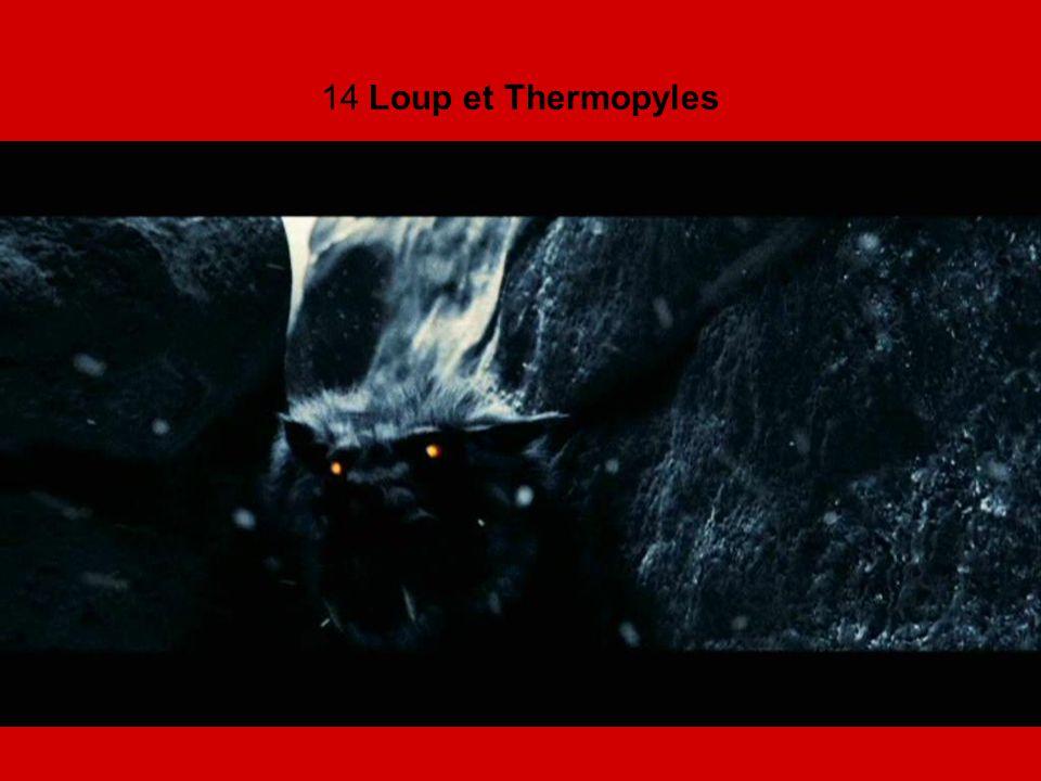 14 Loup et Thermopyles