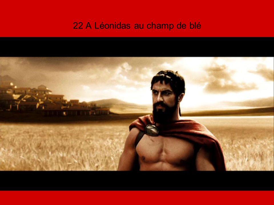 22 A Léonidas au champ de blé