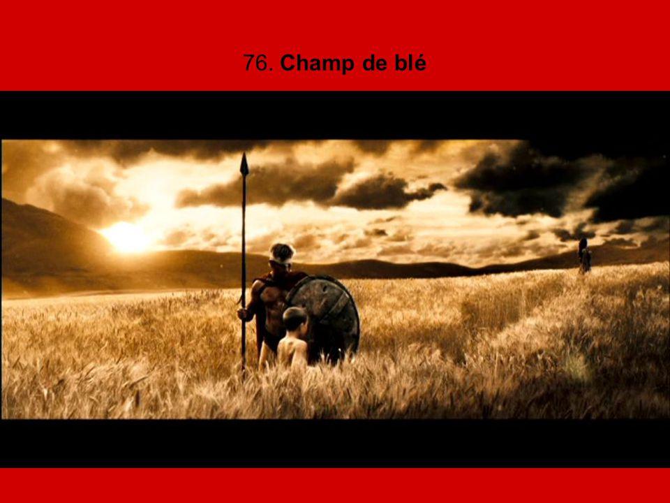 76. Champ de blé