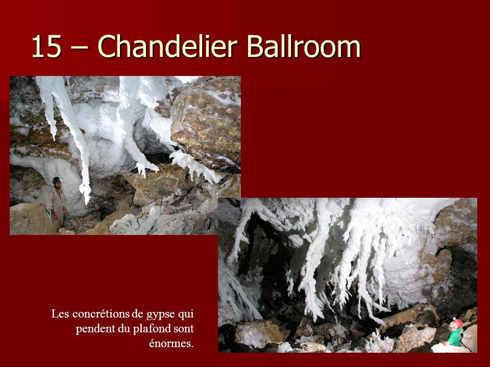 15 – Chandelier Ballroom Les concrétions de gypse qui pendent du plafond sont énormes.