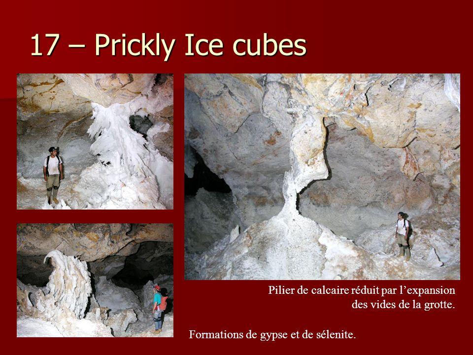 17 – Prickly Ice cubes Pilier de calcaire réduit par l'expansion des vides de la grotte. Formations de gypse et de sélenite.