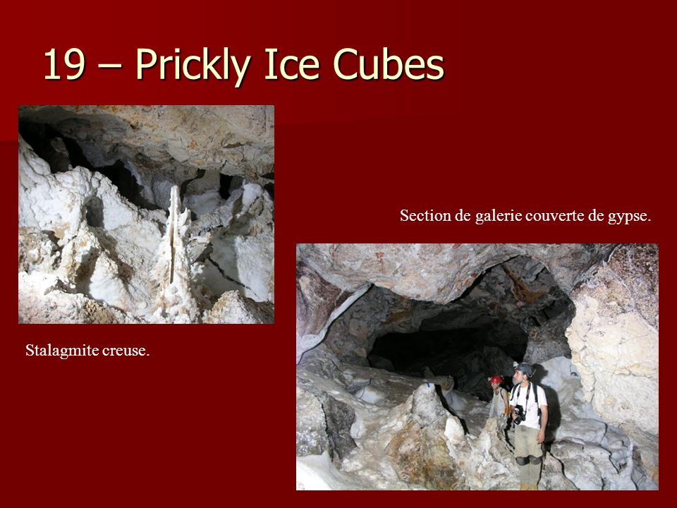 19 – Prickly Ice Cubes Stalagmite creuse. Section de galerie couverte de gypse.