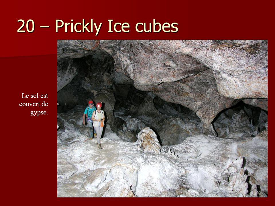 20 – Prickly Ice cubes Le sol est couvert de gypse.