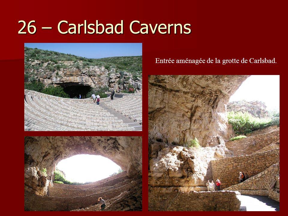 26 – Carlsbad Caverns Entrée aménagée de la grotte de Carlsbad.