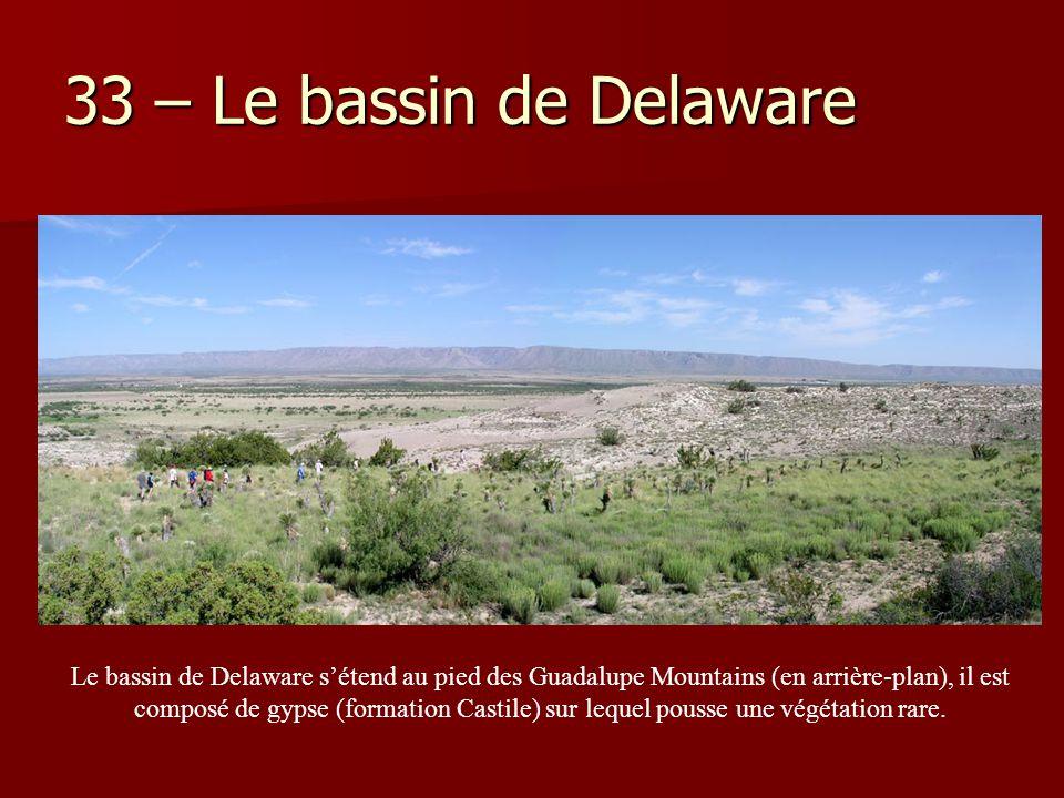 33 – Le bassin de Delaware Le bassin de Delaware s'étend au pied des Guadalupe Mountains (en arrière-plan), il est composé de gypse (formation Castile