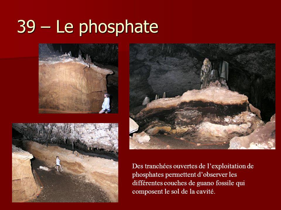 39 – Le phosphate Des tranchées ouvertes de l'exploitation de phosphates permettent d'observer les différentes couches de guano fossile qui composent