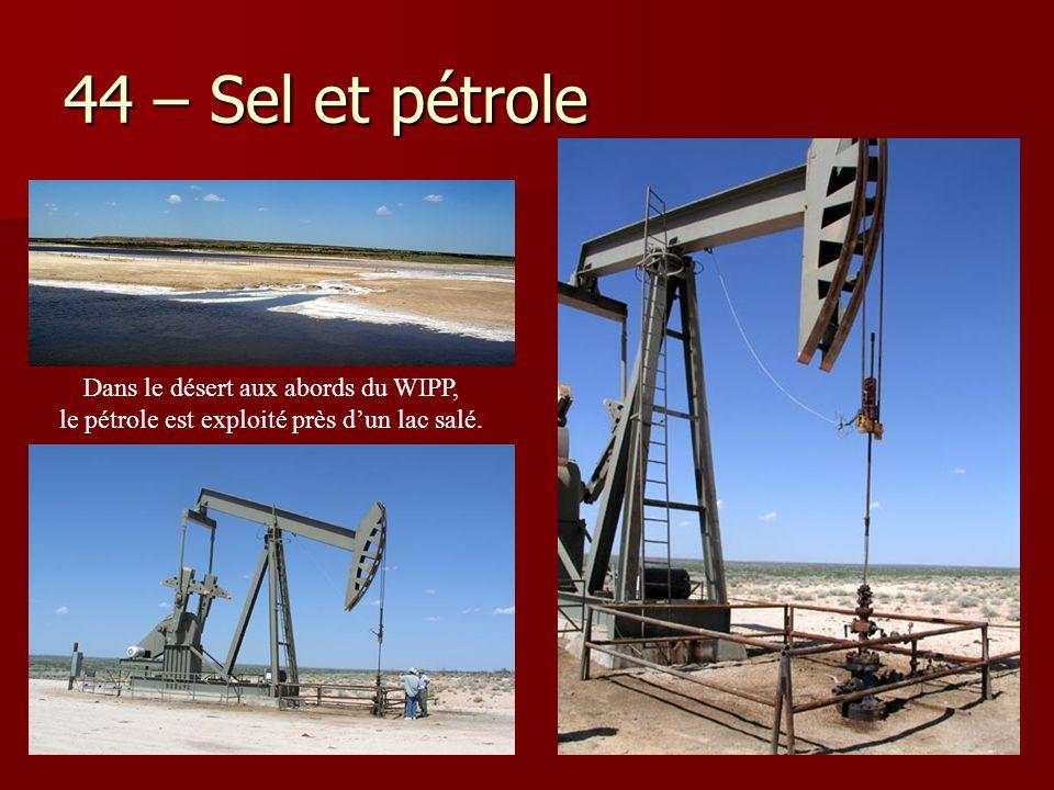 44 – Sel et pétrole Dans le désert aux abords du WIPP, le pétrole est exploité près d'un lac salé.