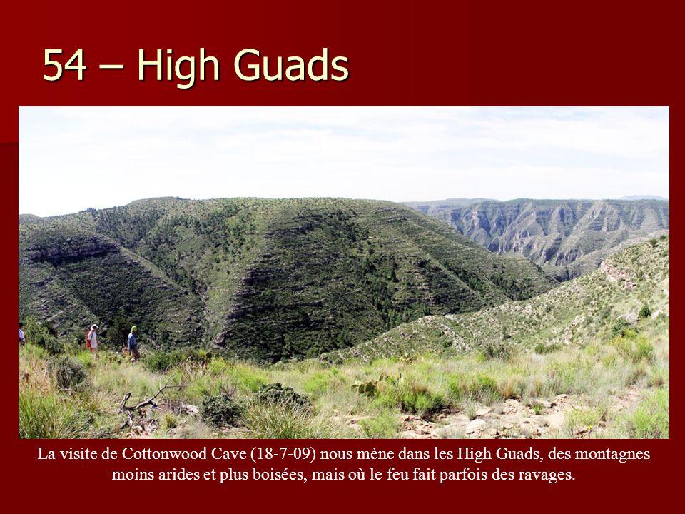 54 – High Guads La visite de Cottonwood Cave (18-7-09) nous mène dans les High Guads, des montagnes moins arides et plus boisées, mais où le feu fait