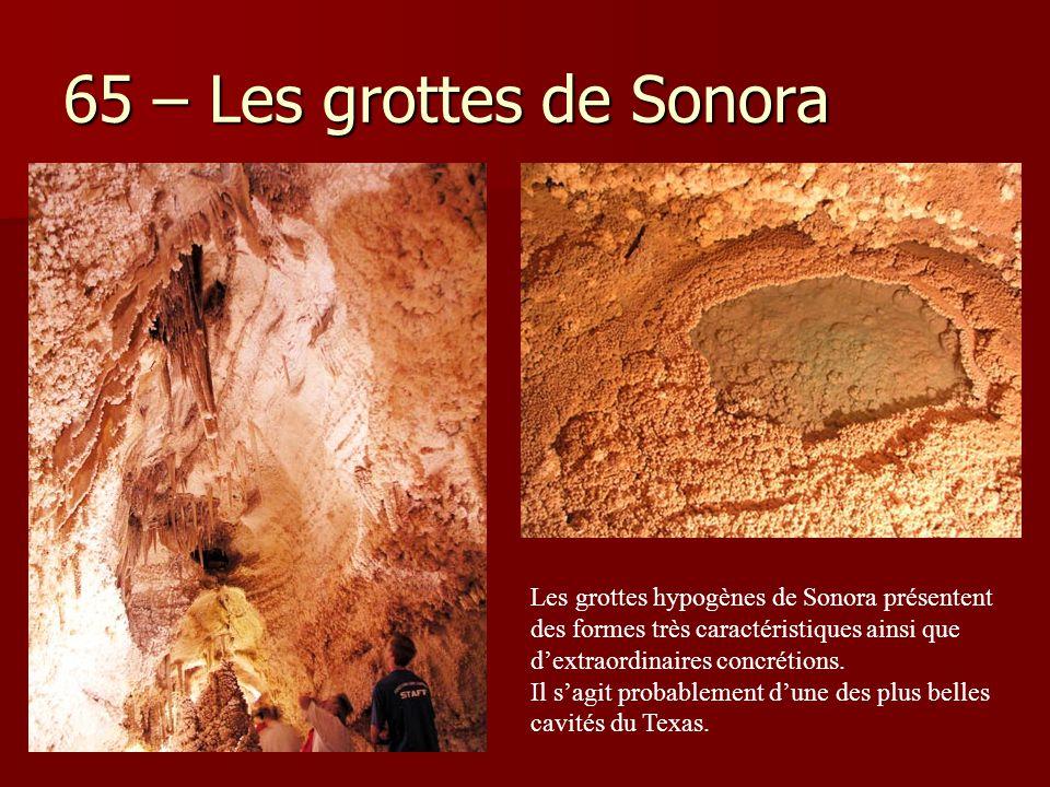 65 – Les grottes de Sonora Les grottes hypogènes de Sonora présentent des formes très caractéristiques ainsi que d'extraordinaires concrétions. Il s'a