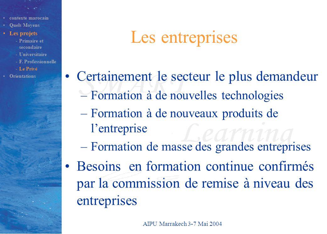 AIPU Marrakech 3-7 Mai 2004 Les entreprises Certainement le secteur le plus demandeur –Formation à de nouvelles technologies –Formation à de nouveaux