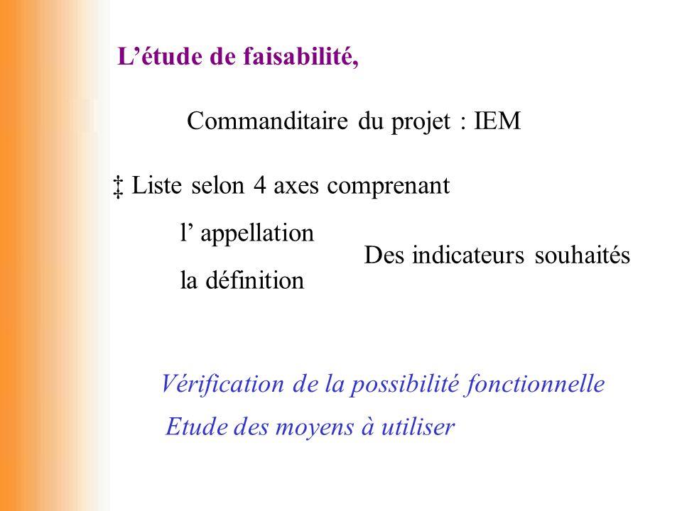 L'étude de faisabilité, Commanditaire du projet : IEM ‡ Liste selon 4 axes comprenant l' appellation la définition Des indicateurs souhaités Vérificat