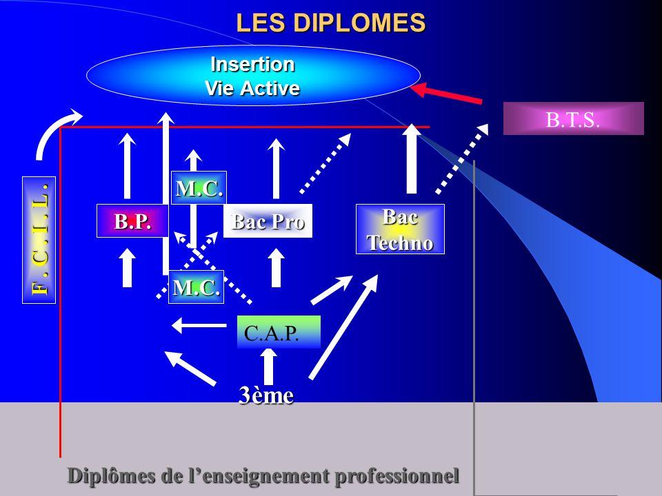 LES DIPLOMES Diplômes de l'enseignement professionnel 3ème Insertion Vie Active BacTechno Bac Pro B.P. M.C. F. C. I. L. M.C. B.T.S. C.A.P.