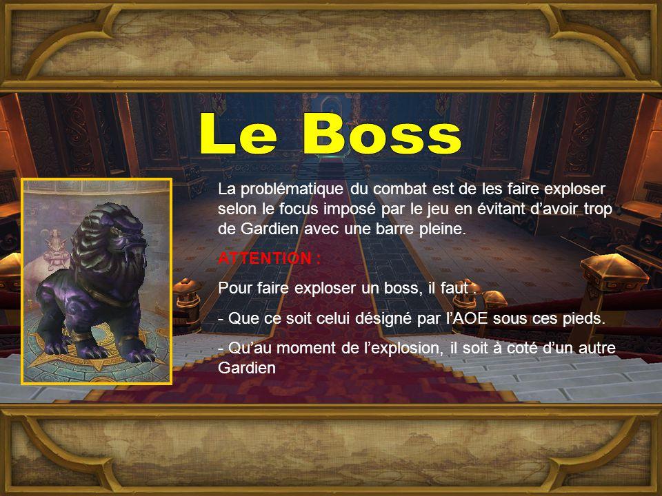 La problématique du combat est de les faire exploser selon le focus imposé par le jeu en évitant d'avoir trop de Gardien avec une barre pleine.