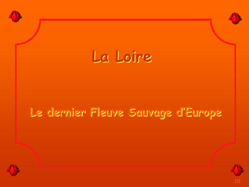Bras de Loire à sec en été. JH Cosne sur Loire