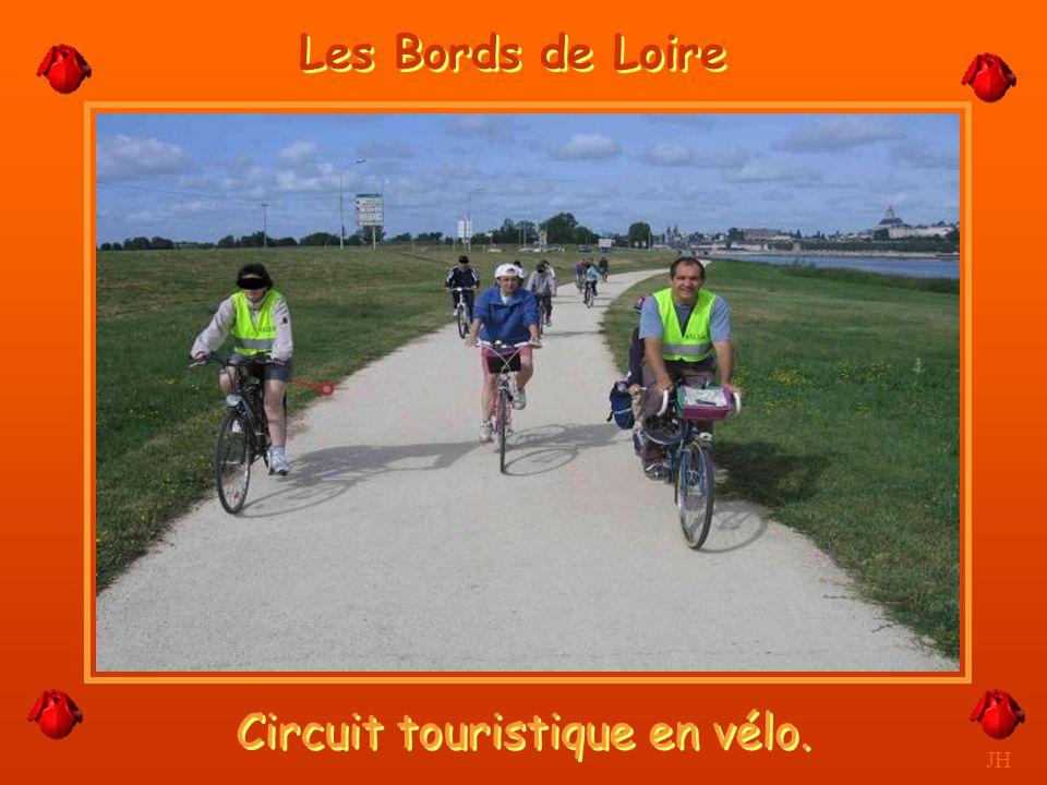 Fière et majestueuse elle nargue les ponts. JH Blois