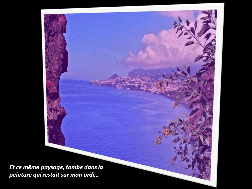 Et ce même paysage, tombé dans la peinture qui restait sur mon ordi…