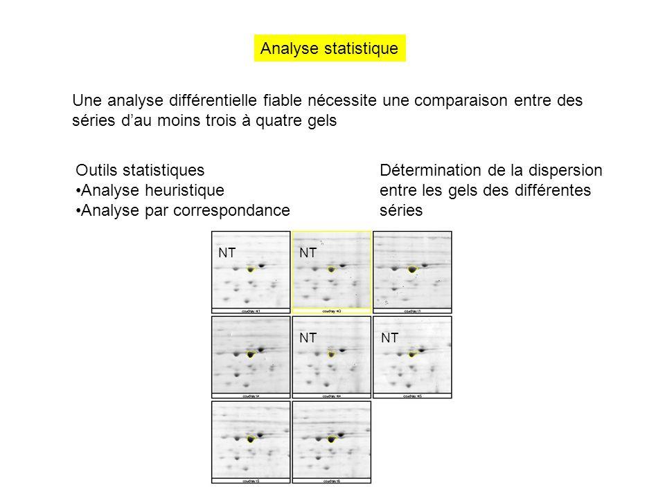 Analyse statistique Une analyse différentielle fiable nécessite une comparaison entre des séries d'au moins trois à quatre gels Outils statistiques An