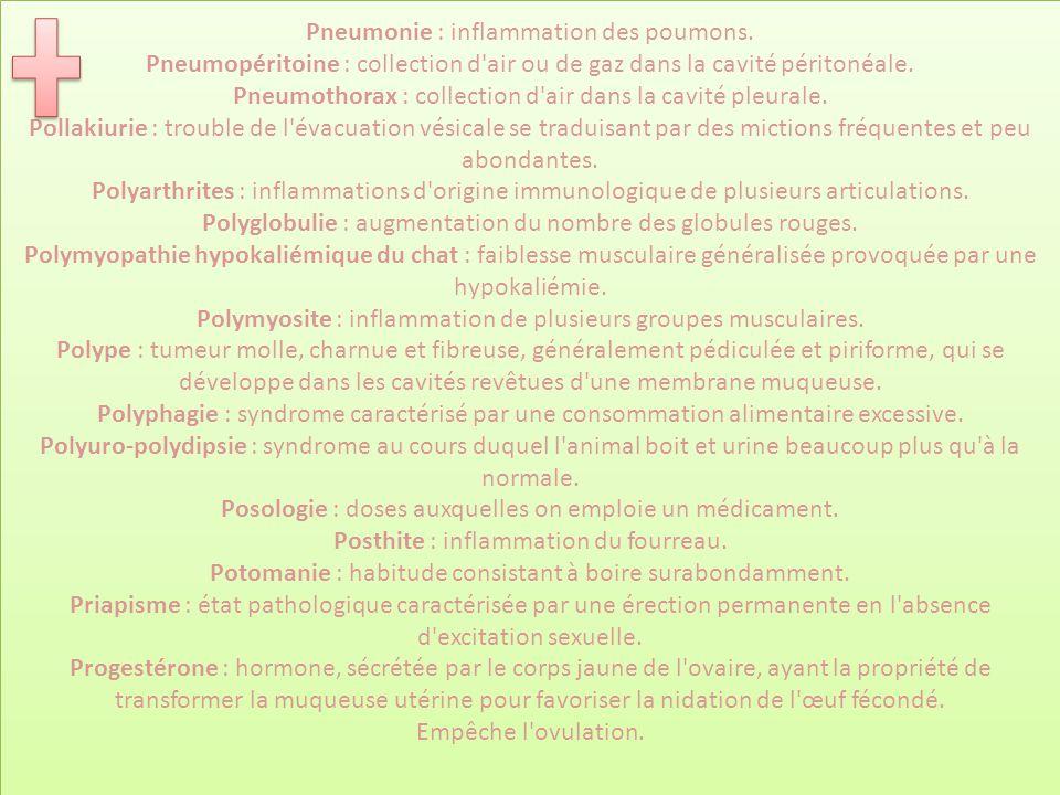 Pneumonie : inflammation des poumons. Pneumopéritoine : collection d'air ou de gaz dans la cavité péritonéale. Pneumothorax : collection d'air dans la