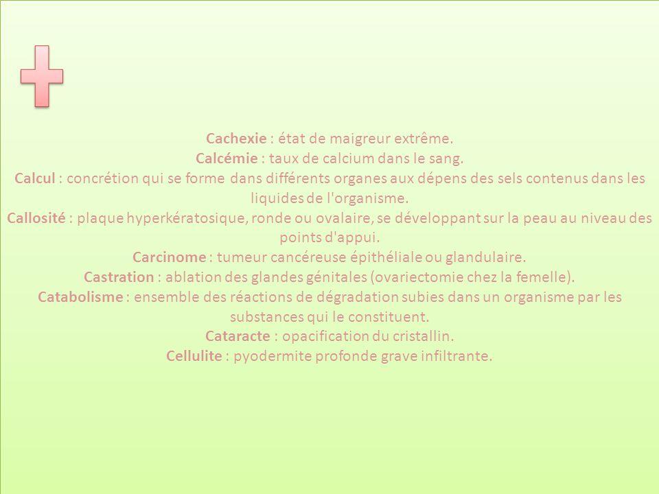 Cachexie : état de maigreur extrême. Calcémie : taux de calcium dans le sang. Calcul : concrétion qui se forme dans différents organes aux dépens des
