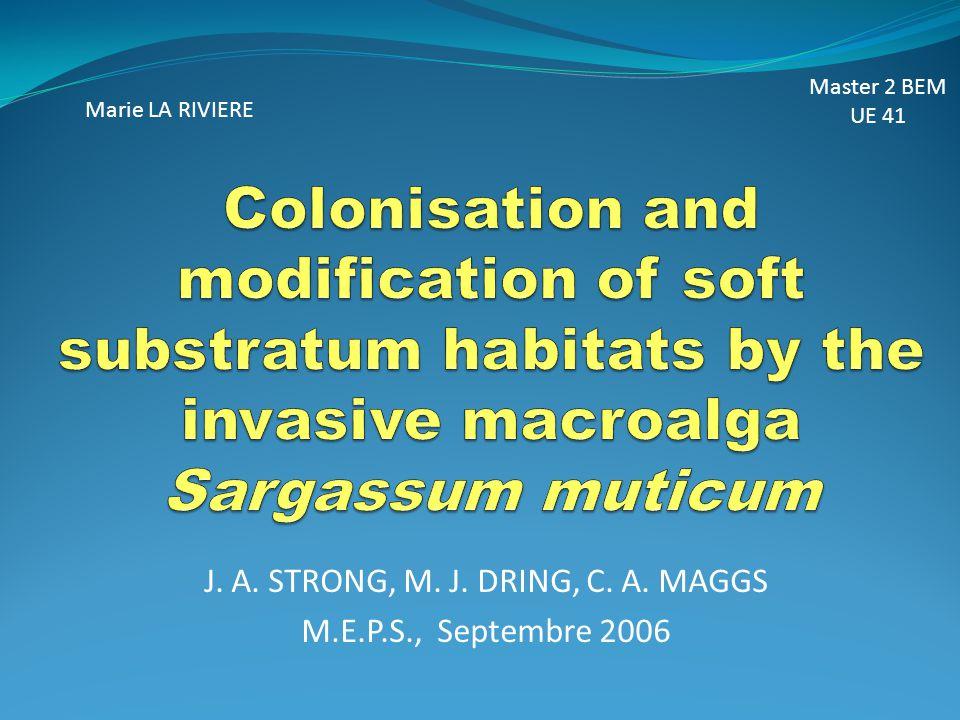 Espèce invasive : espèce introduite ayant un impact écologique/ économique fort dans les habitats concernés.