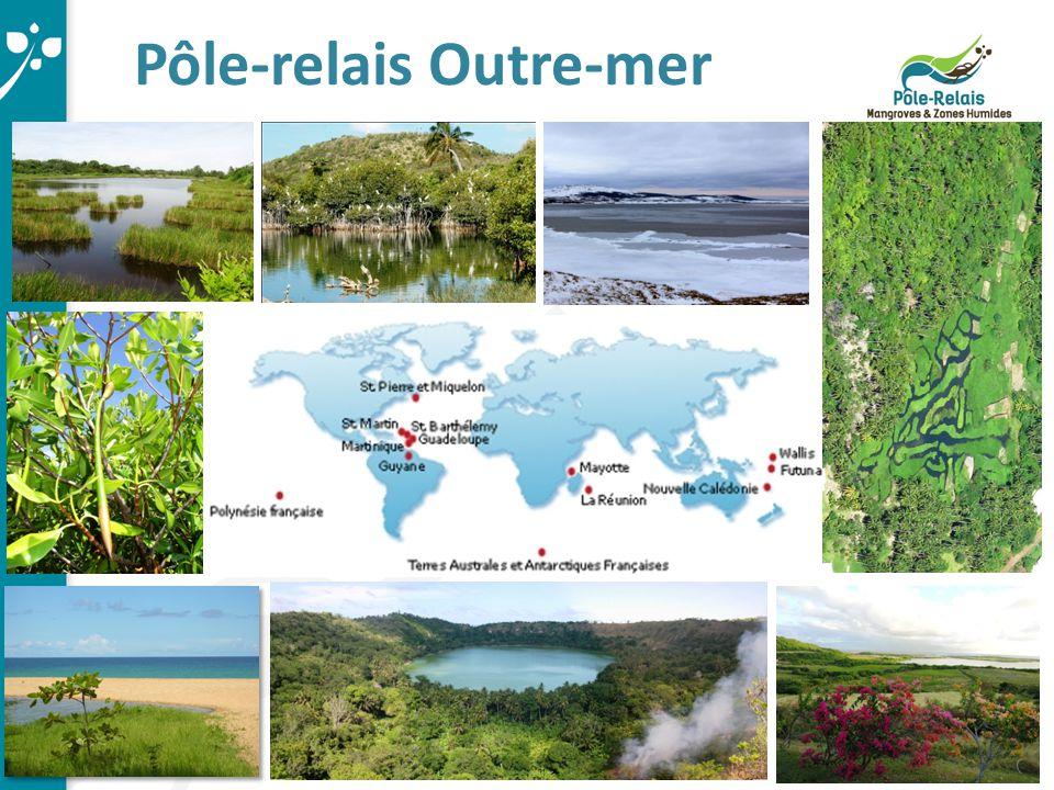 Objectifs des Pôles-relais Constituer un réseau d'échanges inter Pôles et avec les autres acteurs concernés par la conservation des zones humides.