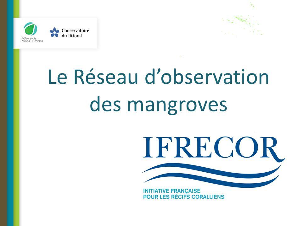 Le Réseau d'observation des mangroves