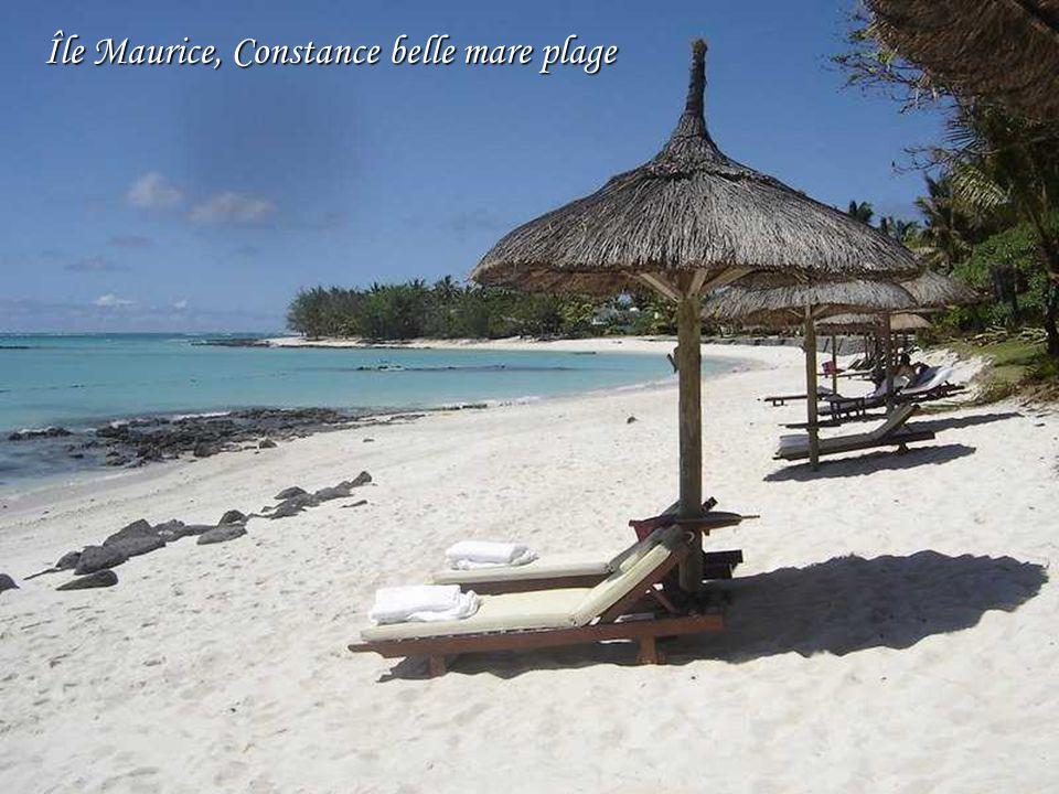 Bora_Bora… Polynésie Française Le sable chaud, La mer, Vahine, belle du pays, Comment ne pas être nostalgique ?