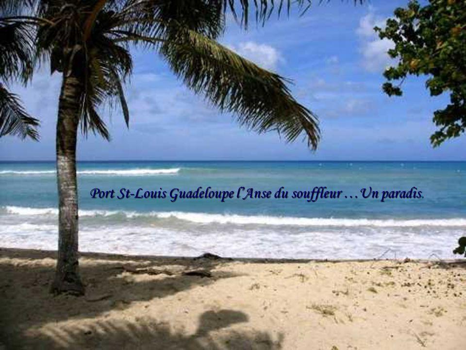 Mozambique : État de la côte Est de l'Afrique.. Sa capitale Maputo.