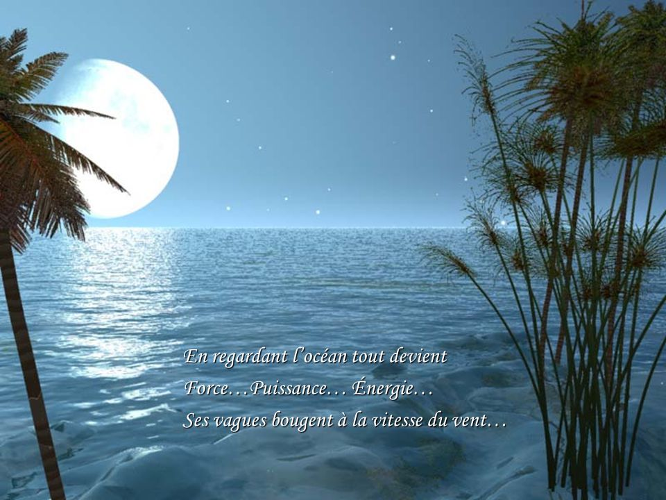 En regardant l'océan tout devient Force…Puissance… Énergie… Ses vagues bougent à la vitesse du vent…