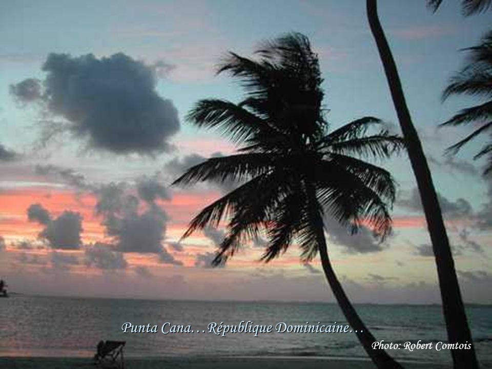 Punta Cana …République Dominicaine Photo: Robert Comtois