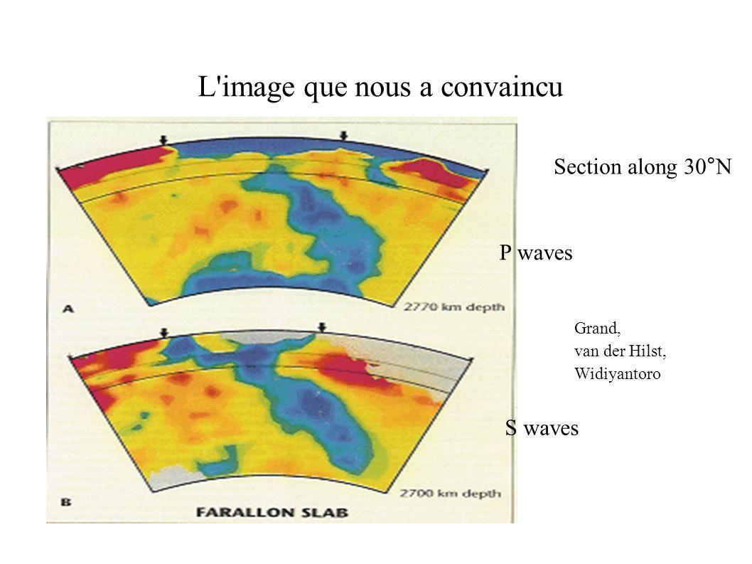 L image que nous a convaincu P waves S waves Section along 30°N Grand, van der Hilst, Widiyantoro